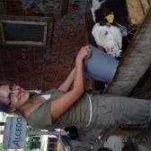 Orsolya - 2 nap - AZ aratás folytatódott