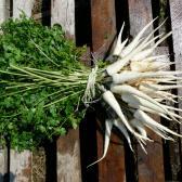 Egy köteg zöldség